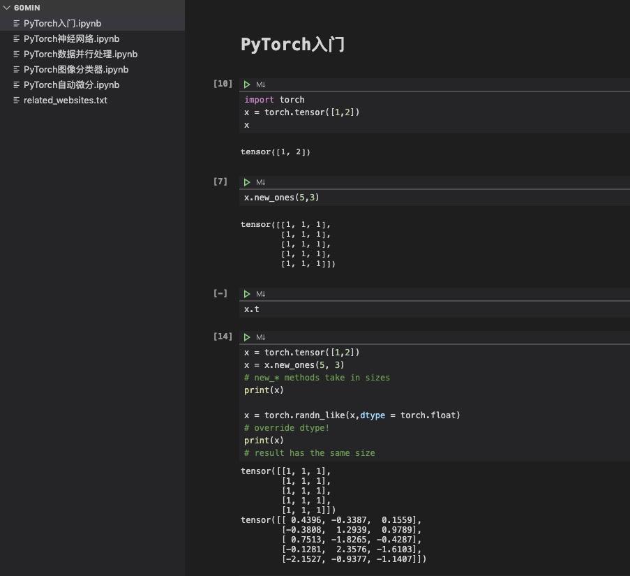 PyTorch 60 分钟入门视频教程- Jupyter 下载